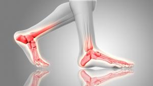 Podo-Orthesiologie